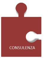 consulenza-1